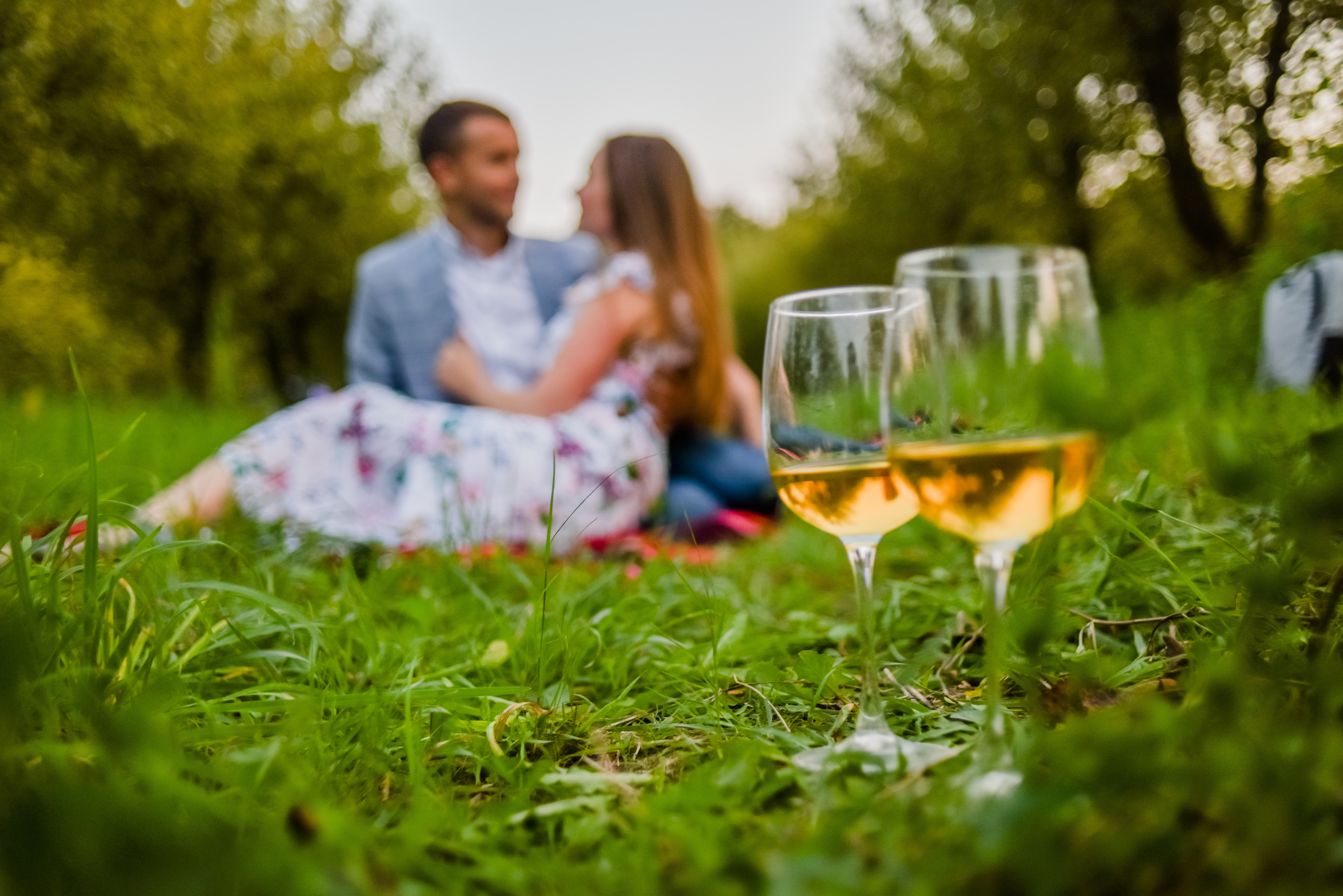 Visit Waipara Springs winery, grab a bike and have a picnic in the vines
