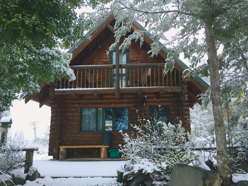 Cabbage Tree cabin